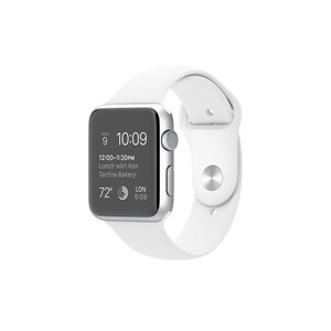 Купить Смарт-часы Apple Watch Sport 42mm Silver (MJ3V2)