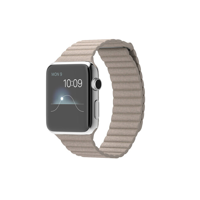 Часы Apple Watch 42mm Stone Leather Loop