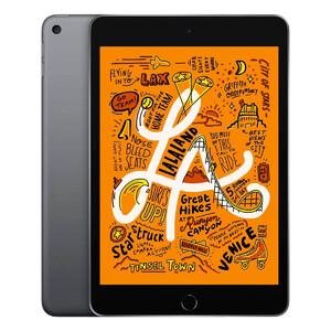 Купить Apple iPad Mini 5 (2019) Wi-Fi + Cellular 256Gb Space Gray (MUXC2RK/A) Официальный UA