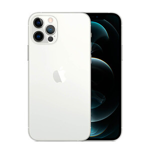 Купить Apple iPhone 12 Pro 256Gb Silver (MGLU3 | MGMQ3)