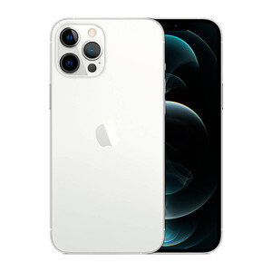 Купить Apple iPhone 12 Pro Max 128Gb Silver (MGD83)