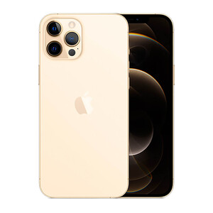 Купить Apple iPhone 12 Pro Max 256Gb Gold (MGDE3)