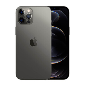 Купить Apple iPhone 12 Pro Max 256Gb Graphite (MGDC3)
