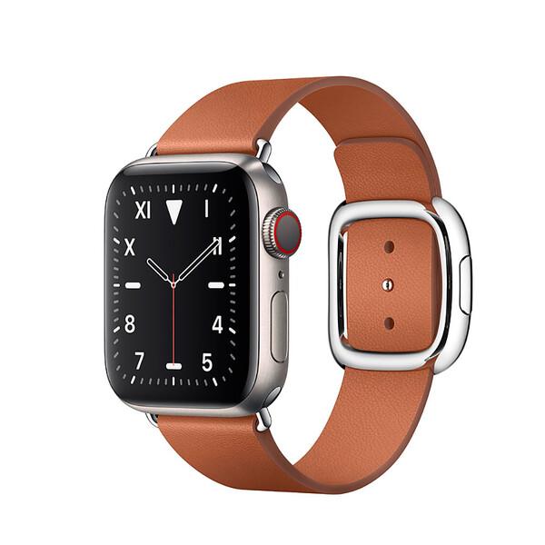 Смарт-часы Apple Watch Series 5 40mm Titanium Case Saddle Brown Modern Buckle (MWQT2)