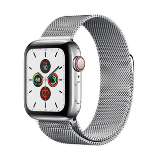 Купить Смарт-часы Apple Watch Series 5 44mm Silver Stainless Steel Case Milanese Loop (MWW32)