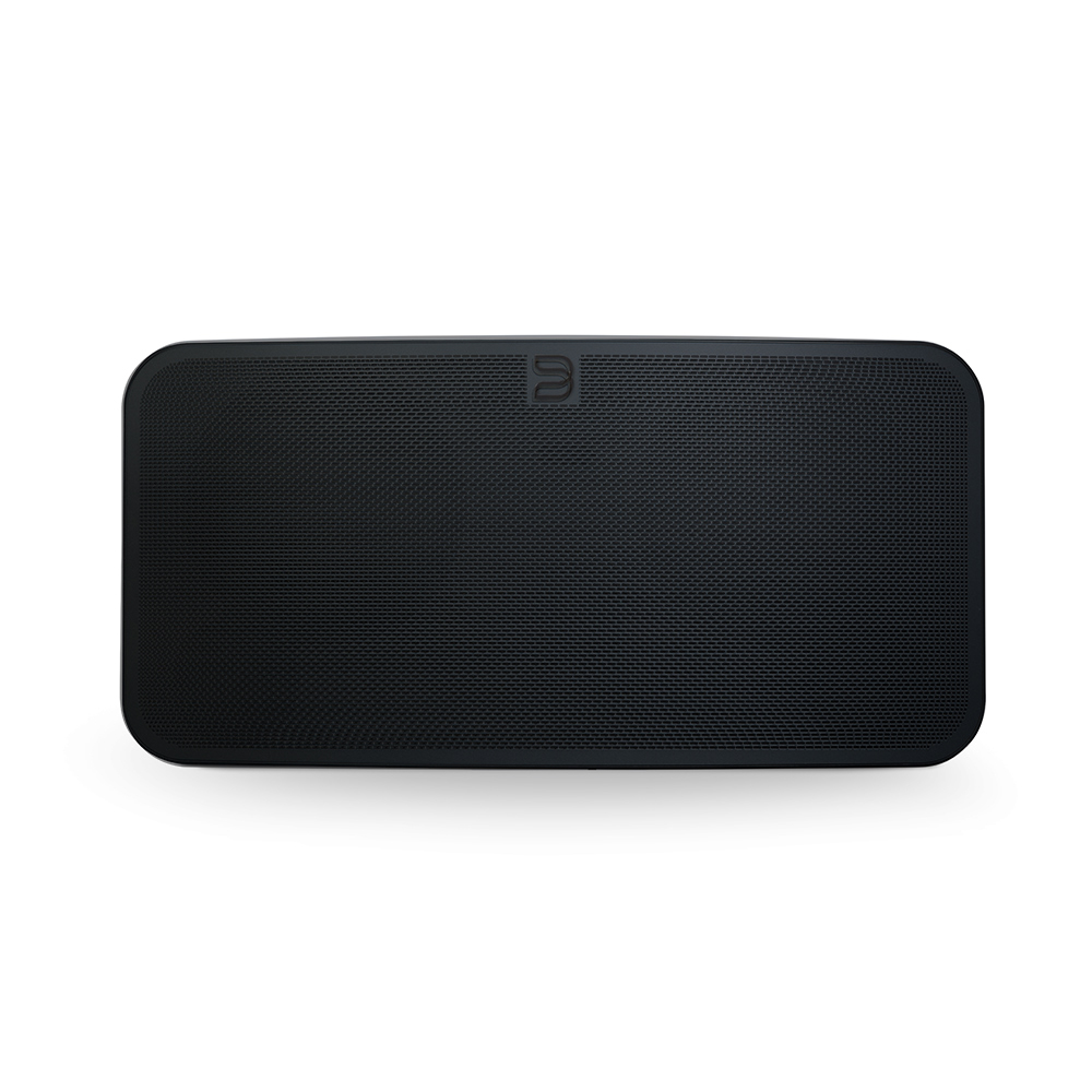 Купить Портативная акустика Bluesound Pulse Mini 2i Black