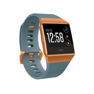 Купить Умные часы Fitbit Ionic S/L Slate Blue/Burnt Orange