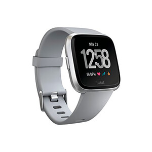 Купить Умные часы Fitbit Versa S/L Gray/Silver