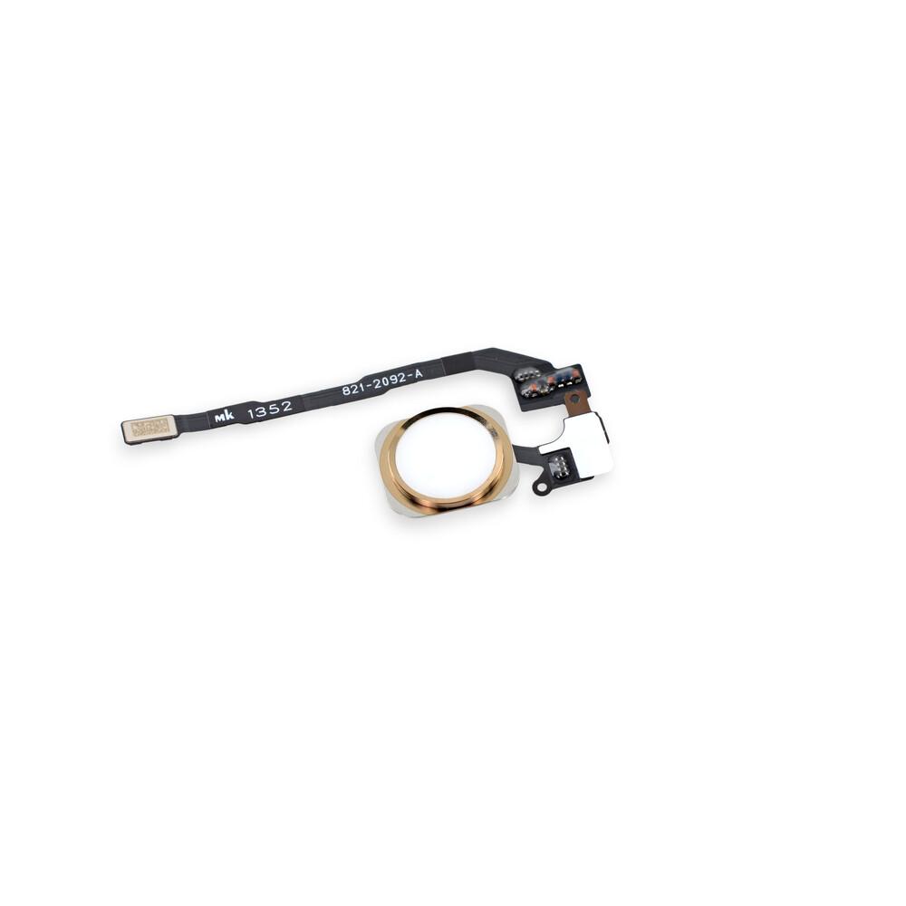 Купить Кнопка Home + шлейф (Gold) для iPhone 5S | SE