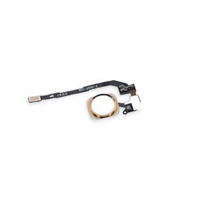 Купить Кнопка Home + шлейф (Gold) для iPhone 5S/SE