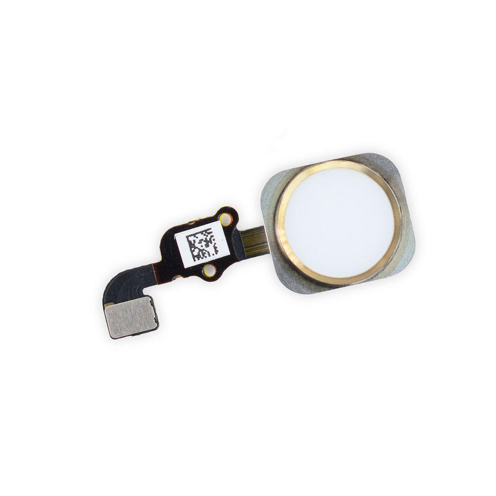 Купить Кнопка Home + шлейф (Gold) для iPhone 6s Plus