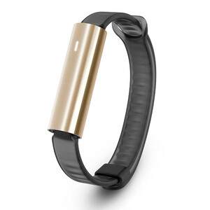 Купить Фитнес-браслет Misfit Ray Stainless Steel Gold/Black Sport Band