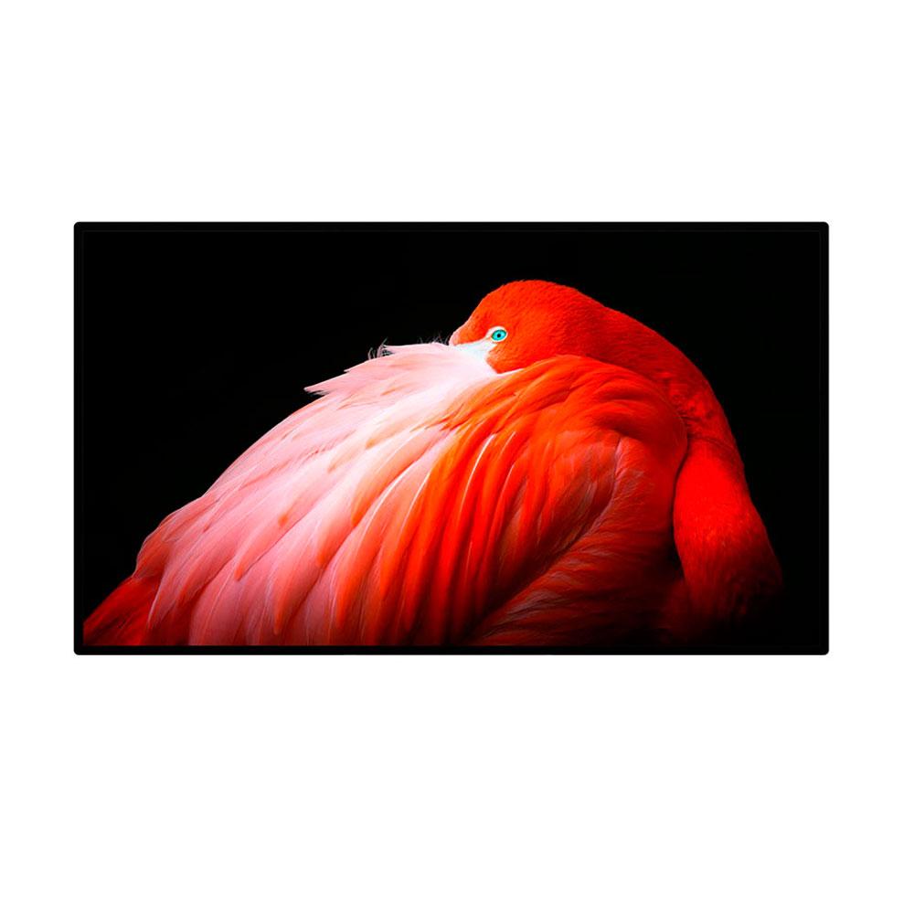 Купить Монитор Apple Pro Display XDR (нанотекстурное покрытие стекла) (MWPF2)