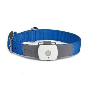 Купить Ошейник Tagg The Pet Tracker GPS