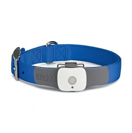Ошейник Tagg The Pet Tracker GPS
