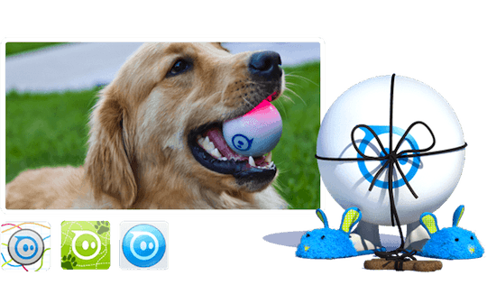 orbotix-gosphero-7-dog
